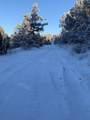 10201 Wolf Road - Photo 21