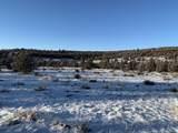10201 Wolf Road - Photo 6