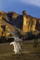 10650 Canyons Ranch Drive - Photo 40