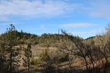1621 Madera Drive - Photo 48
