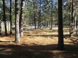 14834 Bluegrass Loop - Photo 16