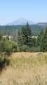 0 Dead Indian Memorial Tl1700 Road - Photo 11