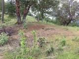 0 Griffin Creek Road - Photo 2