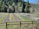 9530 Fork Little Butte Creek Road - Photo 39