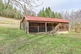 2128 Anderson Creek Road - Photo 34