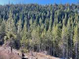 2040 National Forest - Photo 1