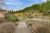 5717 Elk Creek Road - Photo 41
