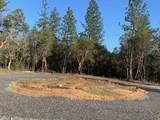 141 Dreamhill Drive - Photo 6
