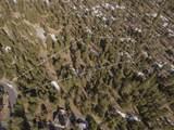 15170 Yellow Pine Loop - Photo 12