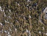 15170 Yellow Pine Loop - Photo 17