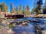 15170 Yellow Pine Loop - Photo 4