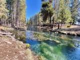 15170 Yellow Pine Loop - Photo 5