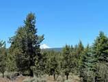 17630 Mountain View Road - Photo 1
