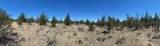Elk Drive - Photo 4