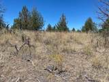 Elk Drive - Photo 5