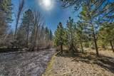 1041 Timber Pine Drive - Photo 30