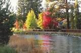 20904 Sage Creek Drive - Photo 38
