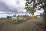 14260 Stallion Drive - Photo 31