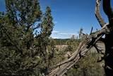 63375-63375 Skyline Ranch Road - Photo 19