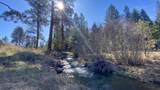 27280 Old Wolf Creek Road - Photo 48