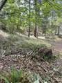 TL100 E Evans Creek Road - Photo 16