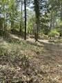 TL100 E Evans Creek Road - Photo 18