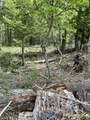 TL100 E Evans Creek Road - Photo 4