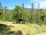 1715 Limpy Creek Road - Photo 43