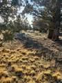 3700 Golden View Ranch - Photo 3