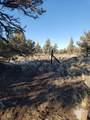 3700 Golden View Ranch - Photo 4