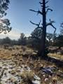 3700 Golden View Ranch - Photo 6