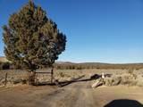 3700 Golden View Ranch - Photo 8