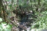 1819 Birdseye Creek Road - Photo 5