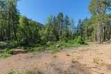 5343 Coyote Creek Road - Photo 31