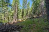5343 Coyote Creek Road - Photo 33