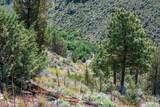 17197 Mountain View Road - Photo 22