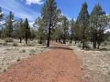 16880 Fishhole Creek Road - Photo 25