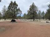 16880 Fishhole Creek Road - Photo 27