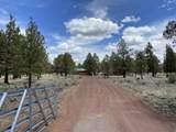 16880 Fishhole Creek Road - Photo 28