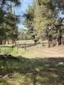 23465 Bear Creek Road - Photo 29