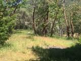 420 L Fork Humbug Creek Road - Photo 13