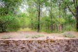 2035 Foots Creek Left Fork Road - Photo 64