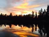 55925 Wood Duck Drive - Photo 6