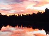 55925 Wood Duck Drive - Photo 8