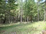 TL 201 Ditch Creek Road - Photo 1