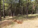 TL 201 Ditch Creek Road - Photo 3