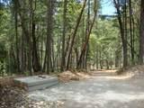 TL 201 Ditch Creek Road - Photo 6