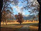 1275 Kubli Road - Photo 1