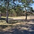 2443 Worthington Road - Photo 1