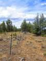TL7100 Cayuse Road - Photo 10